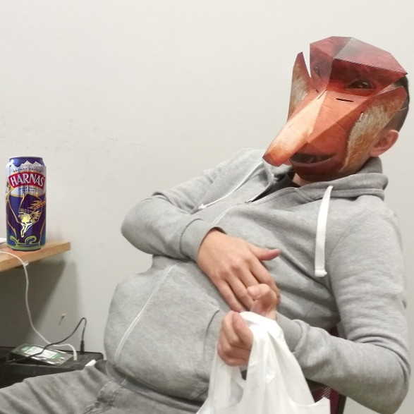 Papierowa Maska 3D Janusz Nosacz