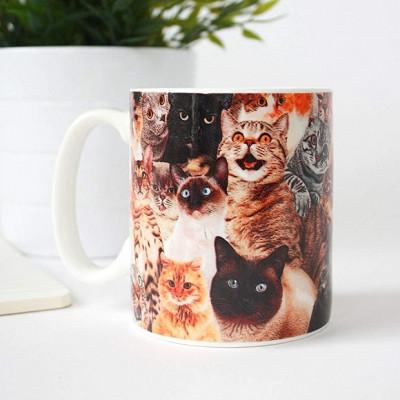 Kubek Koty