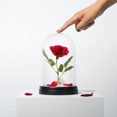 Lampa z Różą