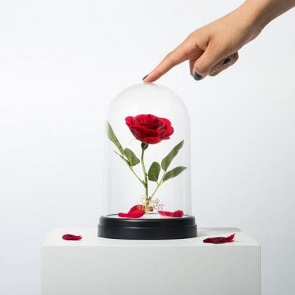 Lampa z Roza.jpg